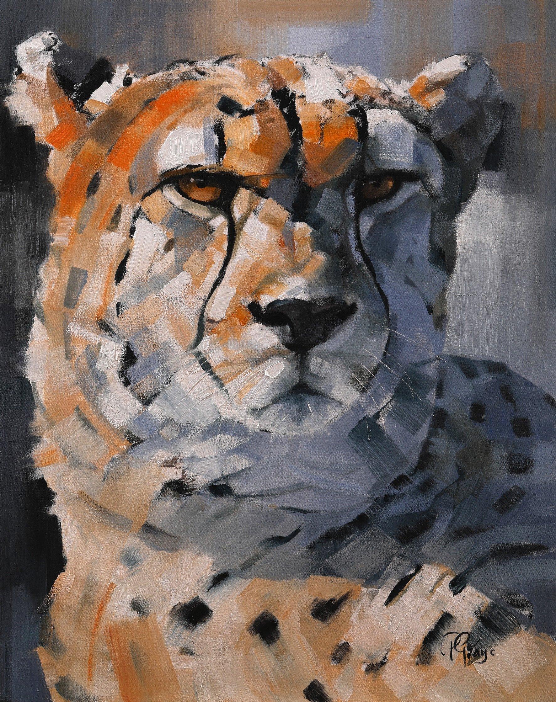 Golden Boy - Contemporary Cheetah Collection