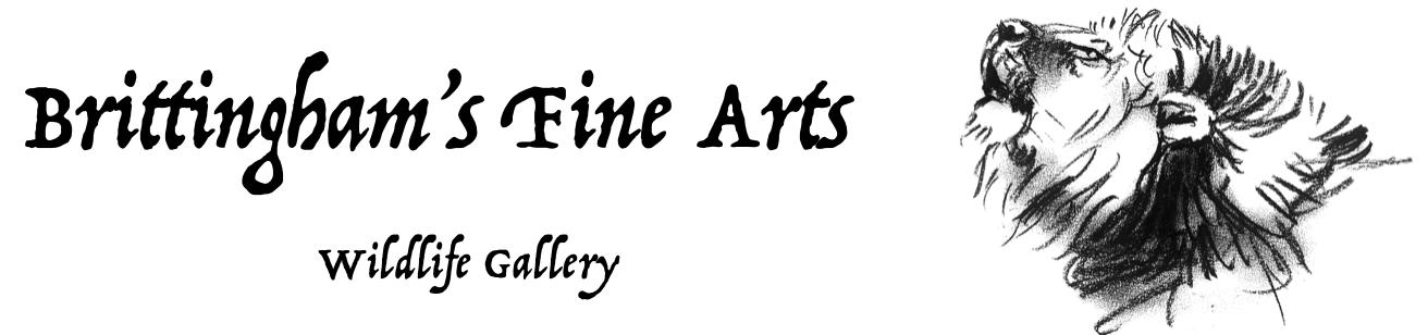 Brittingham's Fine Arts